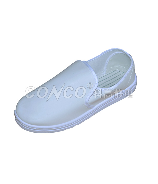 ESD Clean Room Canvas Shoes